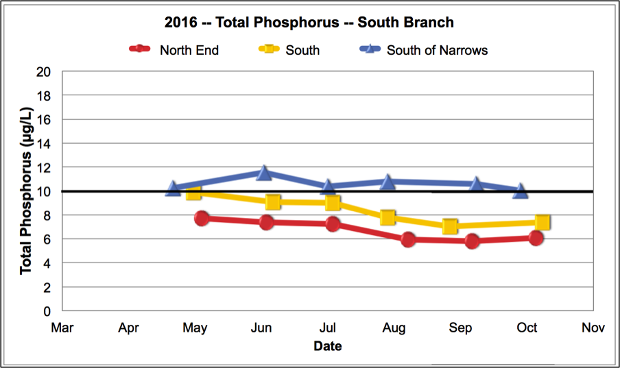 Total Phosphorus South Branch 2016